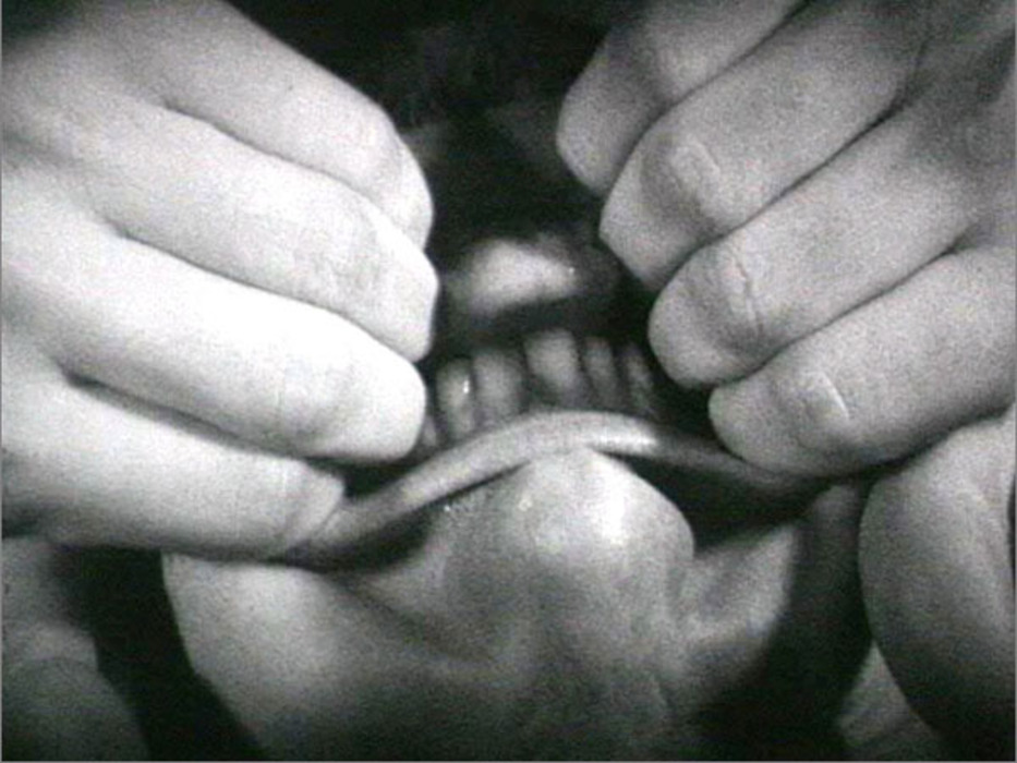 20120209004415-BruceNauman-PullingMouth